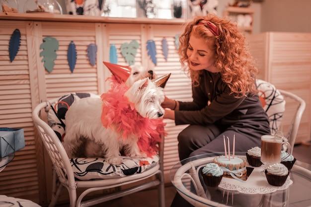 Decoraties op honden. liefdevolle roodharige eigenaar die wat versieringen op haar schattige honden aanbrengt