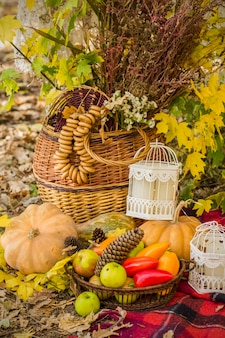 Decoraties voor herfstpicknick in bos. retro foto in de natuur. warme herfstdagen. nazomer. rustiek herfst stilleven. oogst of thanksgiving. herfst decor, feest. lantaarn, pompoen