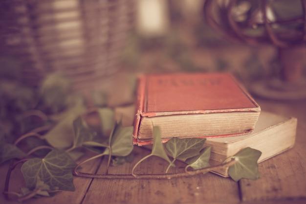 Decoratieve achtergrond met oude boeken en planten