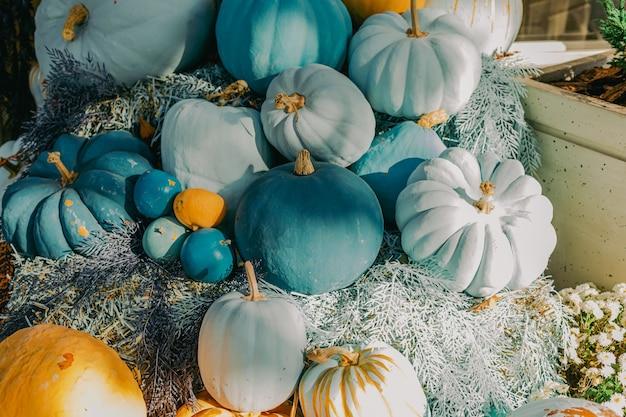 Decoratieve blauwe en oranje pompoenen buiten bloemen en buiten halloween decor gevel buitenkant