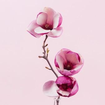 Decoratieve bloemen Premium Foto