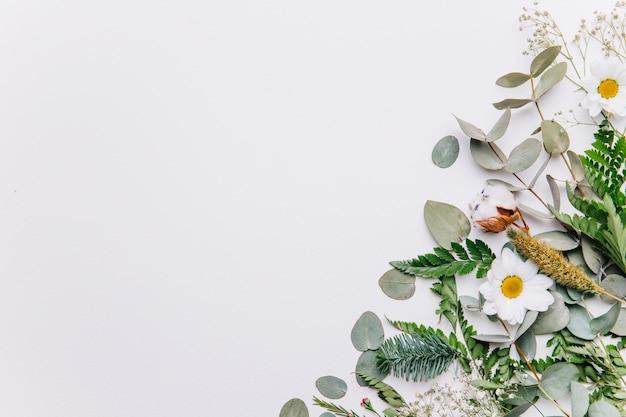 Decoratieve bloemenachtergrond