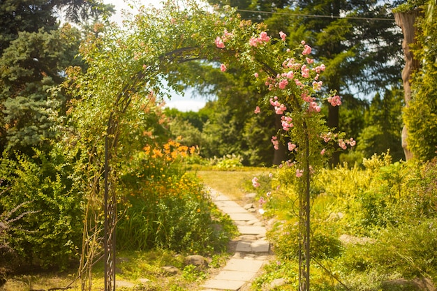 Decoratieve boog met rozen in de zomertuin