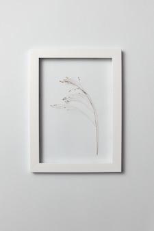 Decoratieve compositie van bloeiwijze van plant in een rechthoekig frame op een lichte muur met kopie ruimte. plat leggen.