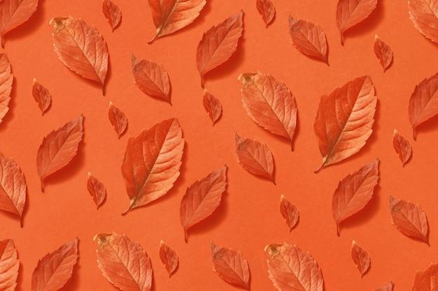 Decoratieve kleurrijke achtergrond van herfst oranje bladeren van verschillende grootte en vormen