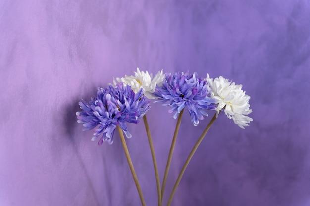 Decoratieve paarse en witte bloemen