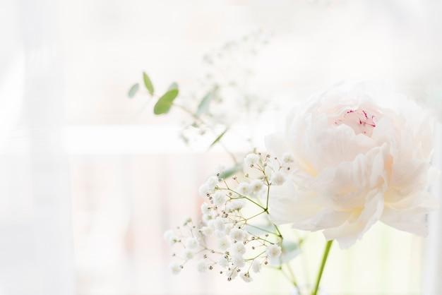 Decoratieve planten en bloemen in een huis