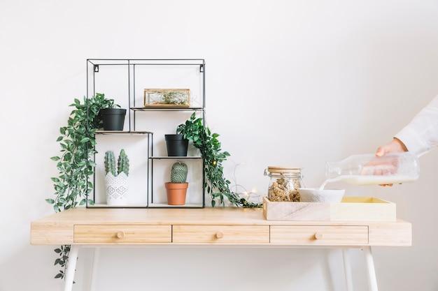 Decoratieve planten op tafel