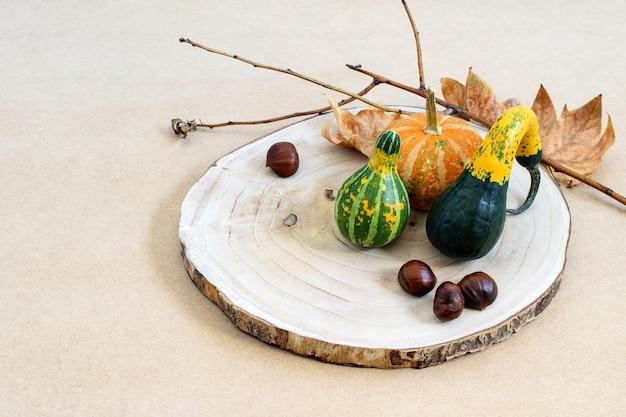 Decoratieve pompoenen en kastanjes op de houten cirkel en op de natuurlijke onbeschofte tafel.
