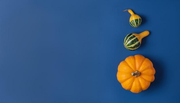 Decoratieve pompoenen op klassiek blauw.