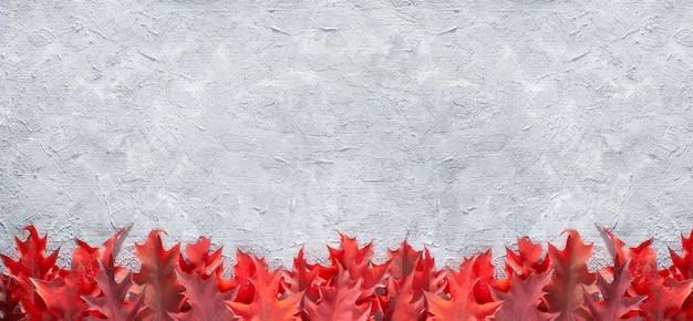 Decoratieve rand gemaakt van rode eikenbladeren op grijze gestructureerde achtergrond, panoramisch beeld, kopie-ruimte.