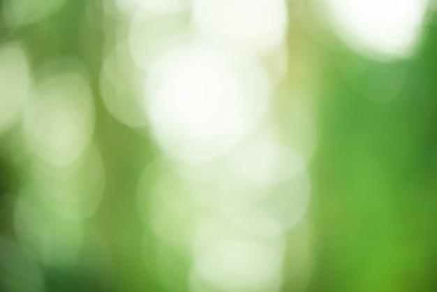 Defocus lichtgroen. natuurlijke groene onscherpe achtergrond.