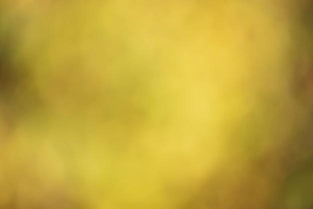 Defocus wazig herfst gele achtergrond met bladeren onscherp. natuurlijke achtergrond.