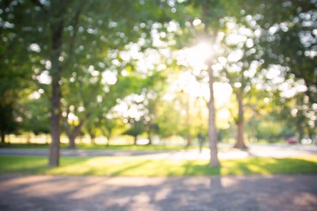 Defocused bokeh achtergrond van tuin met tot bloei komende bomen in zonnige dag, achtergrond