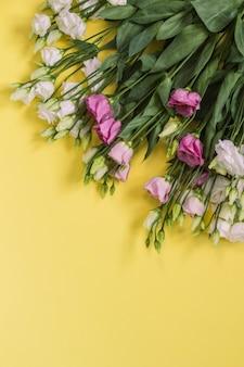 Delicate eustoma-bloemen op een gele en roze achtergrond
