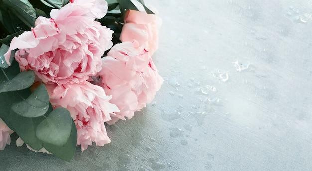 Delicate pastel roze pioenrozen achtergrond close-up