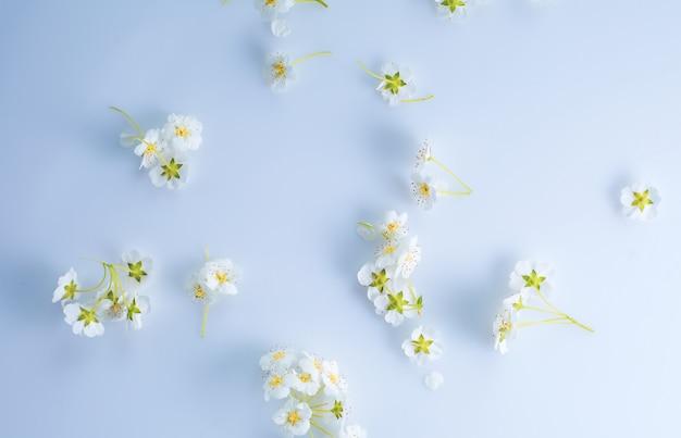 Delicate witte bloemen op een grijze ondergrond