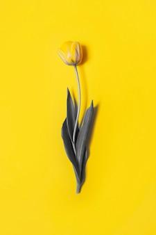 Demonstrerende kleuren van het jaar 2021 - grijs en geel. gele tulp op gele achtergrond. verlichtend geel en ultiem grijs