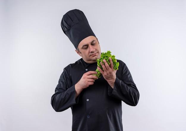 Denkende mannelijke kok van middelbare leeftijd in eenvormige chef-kok die salade in zijn hand bekijkt