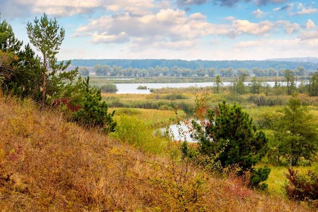 Dennen en sparren op een heuvel, rivier en bos in de verte