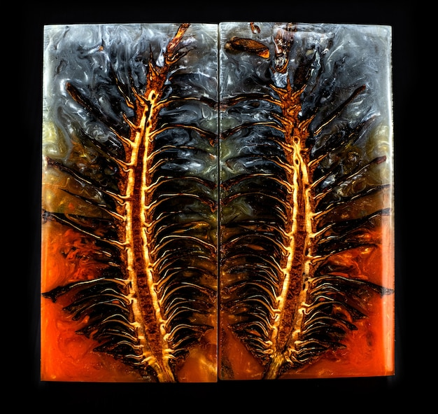 Dennenappel gieten epoxyhars stabiliserend voor blanks op zwarte achtergrond