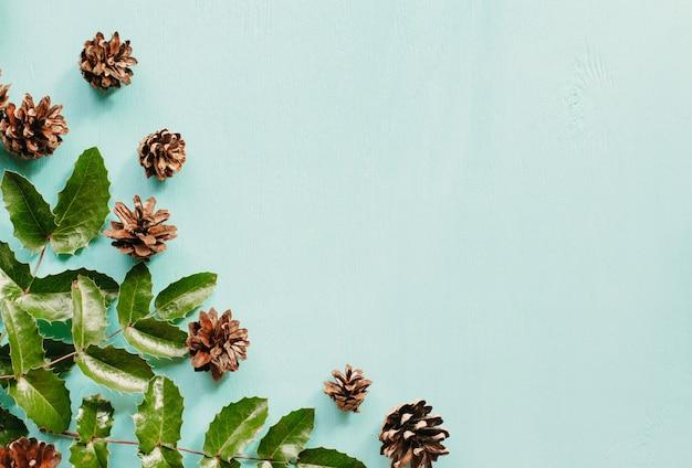 Dennenappels en bladeren van mahonia op een blauw hout