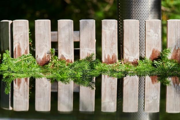 Dennentakken in de buurt van een hete naaldboom in een water van hot tube spa