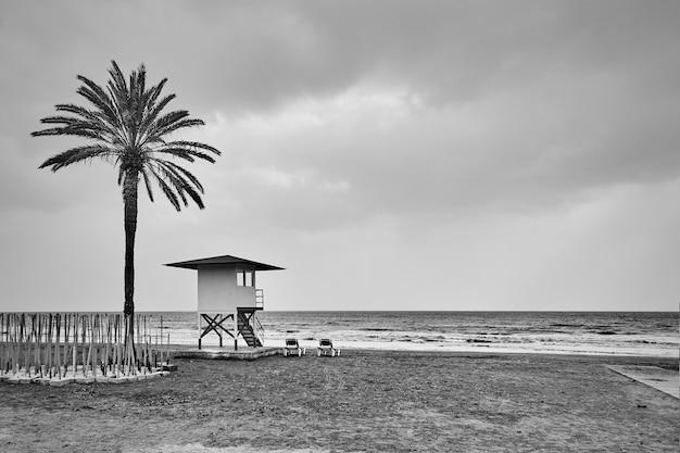 Desolaat strand met palmbomen en badmeestertoren aan zee. zwart-witfotografie, landschap