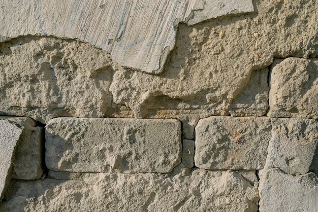 Detail dat van een oude bakstenen muur is ontsproten.