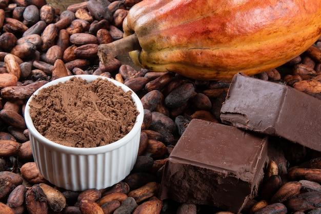 Detail van cacaofruit met stukjes chocolade en cacaopoeder op ruwe cacaobonen.