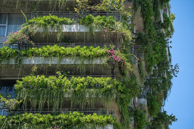 Detail van de gevel van een ecologisch gebouw met groene planten en bloemen op de stenen muur van de gevel van het huis aan de straat van de stad danang in vietnam