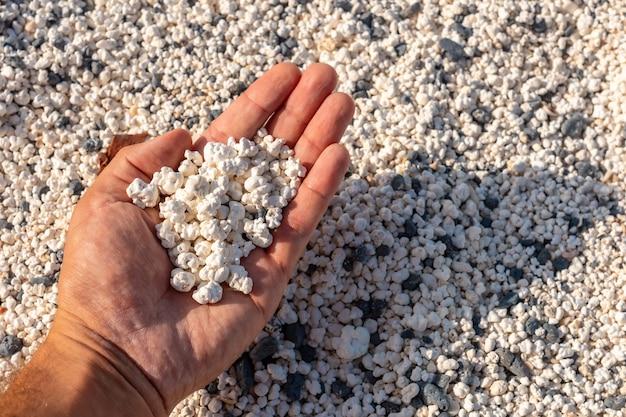 Detail van de stenen van popcorn beach in de buurt van de stad corralejo, ten noorden van het eiland fuerteventura, canarische eilanden. spanje