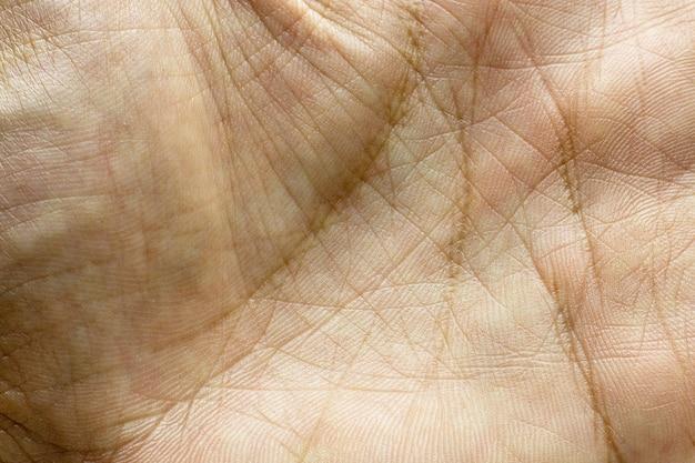 Detail van handafdruk of huid van menselijke hand.