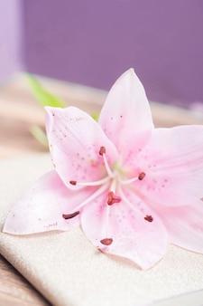 Detail van mooie roze leliebloem