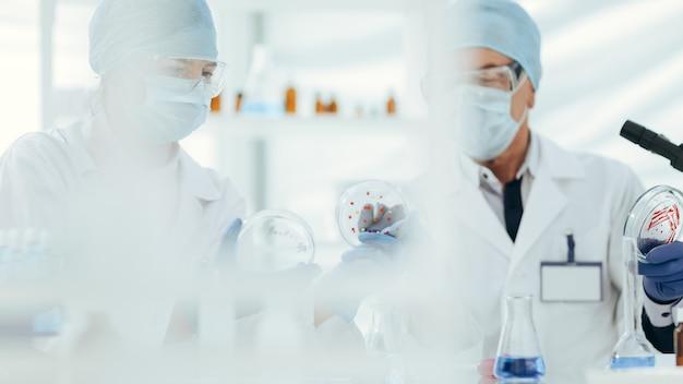 Detailopname. microbiologen die de resultaten van een wetenschappelijk experiment bespreken. wetenschap en gezondheid.