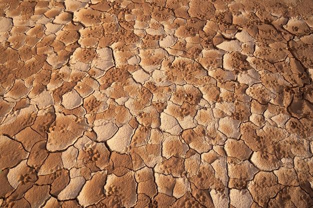 Details van de grond de scheuren in de grond. vanwege het gebrek aan vocht
