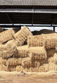Details van de schuur waarop gestapeld op elkaar gestapelde strostapels van tarwe en rogge voor gebruik in vee, de details van de constructie met een dak en zonder muren
