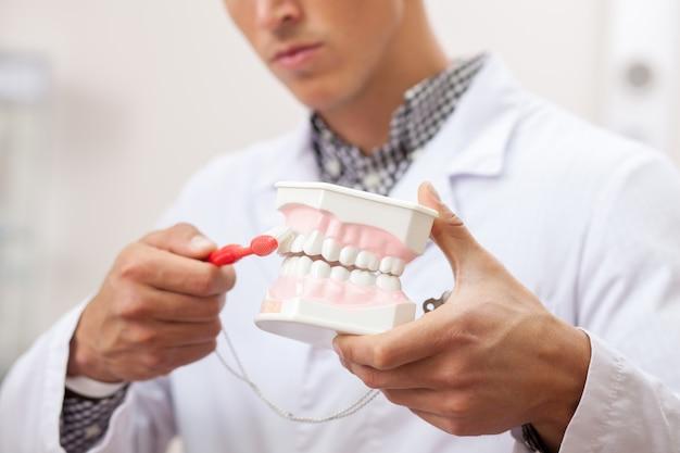 Dicht omhoog bebouwd van een mannelijke tandarts die toont hoe te tanden correct te borstelen