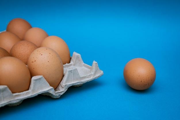 Dienblad met bruine eieren op blauw, één ei is afzonderlijk