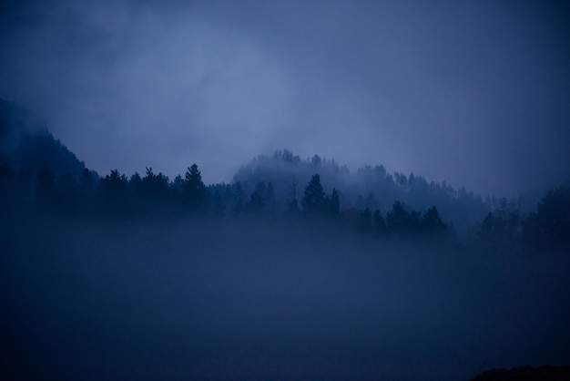 Diepblauwe waas, mystieke mistige ochtend. fantastisch landschap, dikke mist over een bergrivier in de schemering