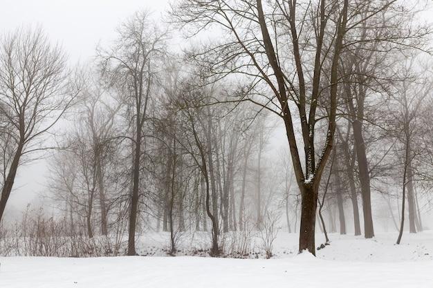 Diepe sneeuwafwijkingen na de laatste sneeuwval