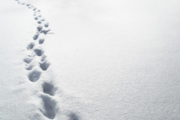 Diepe voetafdrukken in de sneeuw, kopieer ruimte. sneeuwbanken na een sneeuwstorm, wegen niet vrijgemaakt.