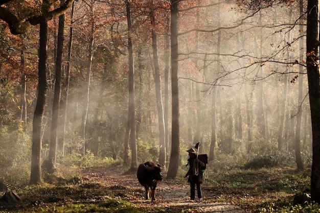 Dier en man lopen in het bos