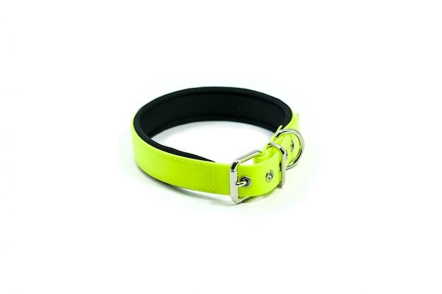 Dierbenodigdheden over rubberen kraag van groen voor huisdier.