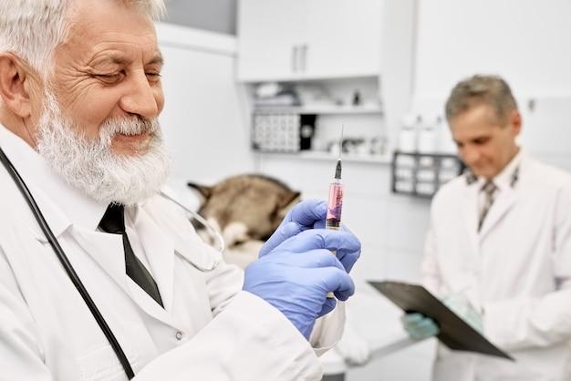 Dierenarts arts in uniform en handschoenen met naald.