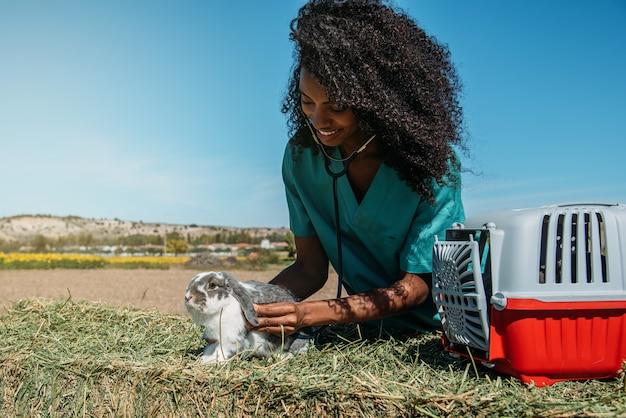 Dierenarts die een konijntje op een hooigebied onderzoekt