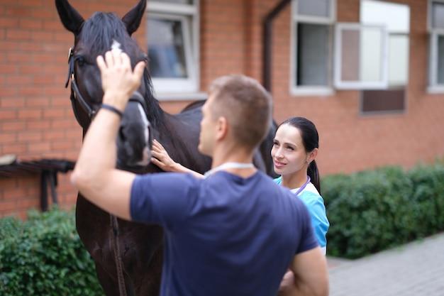Dierenarts en eigenaar paard zullen lichamelijk onderzoek doen
