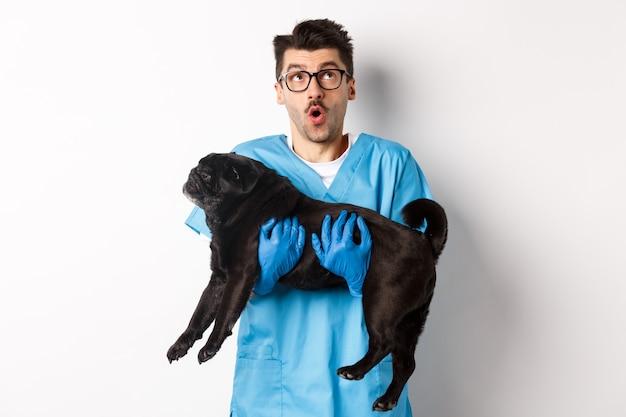Dierenarts kliniek concept. verbaasde mannelijke arts dierenarts met schattige zwarte pug hond, glimlachend en staren onder de indruk, staande over wit.