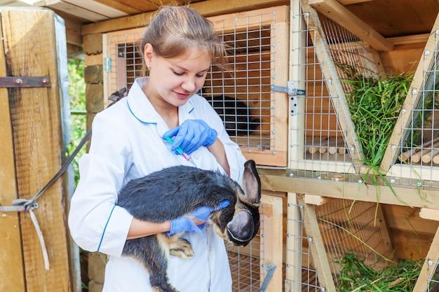 Dierenarts vrouw met spuit die en konijn op boerderij houdt inspuit