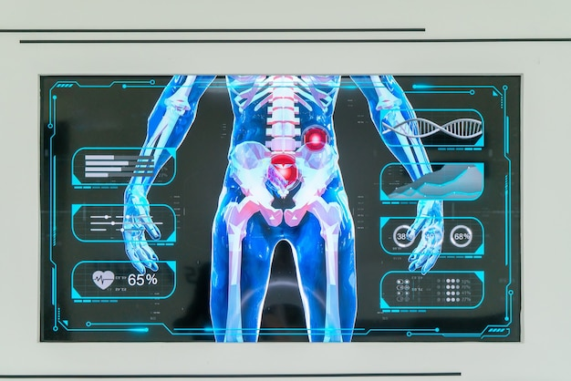 Digitale oefenpop, weergave van menselijk skelet